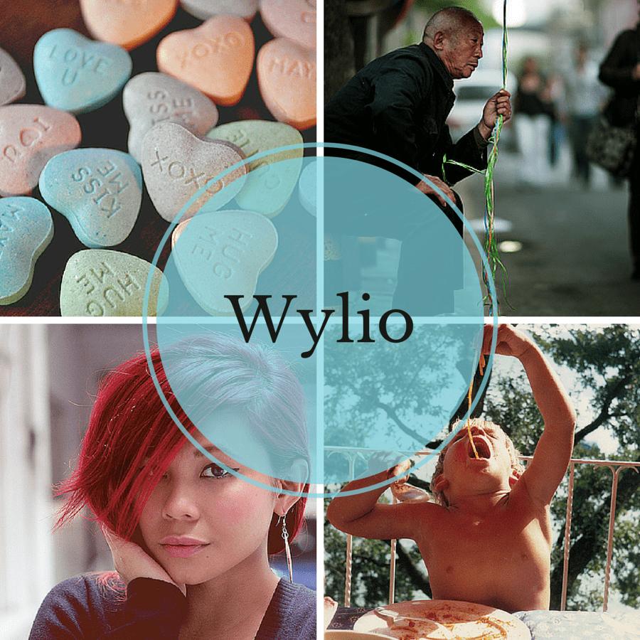 wylio-cover