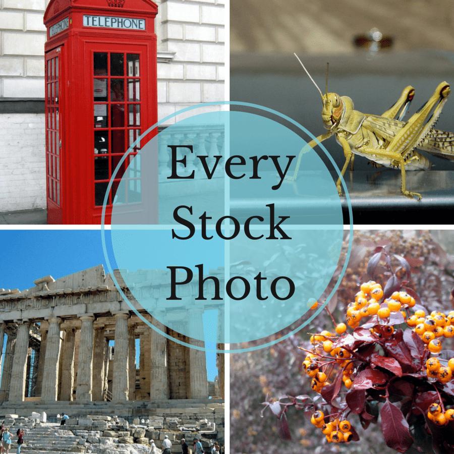 everystockphoto-cover