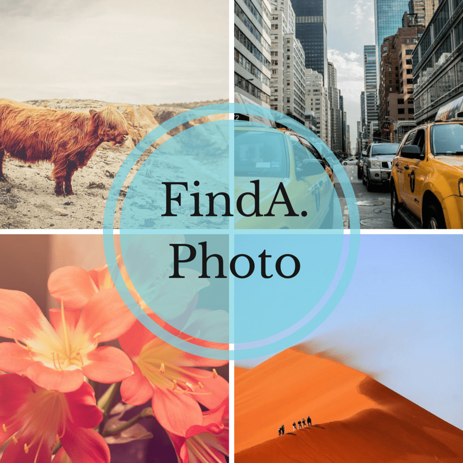 findaphoto-cover