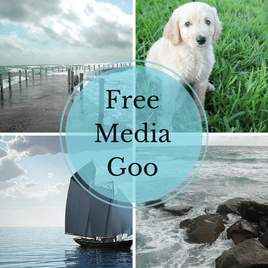 freemediagoo-cover