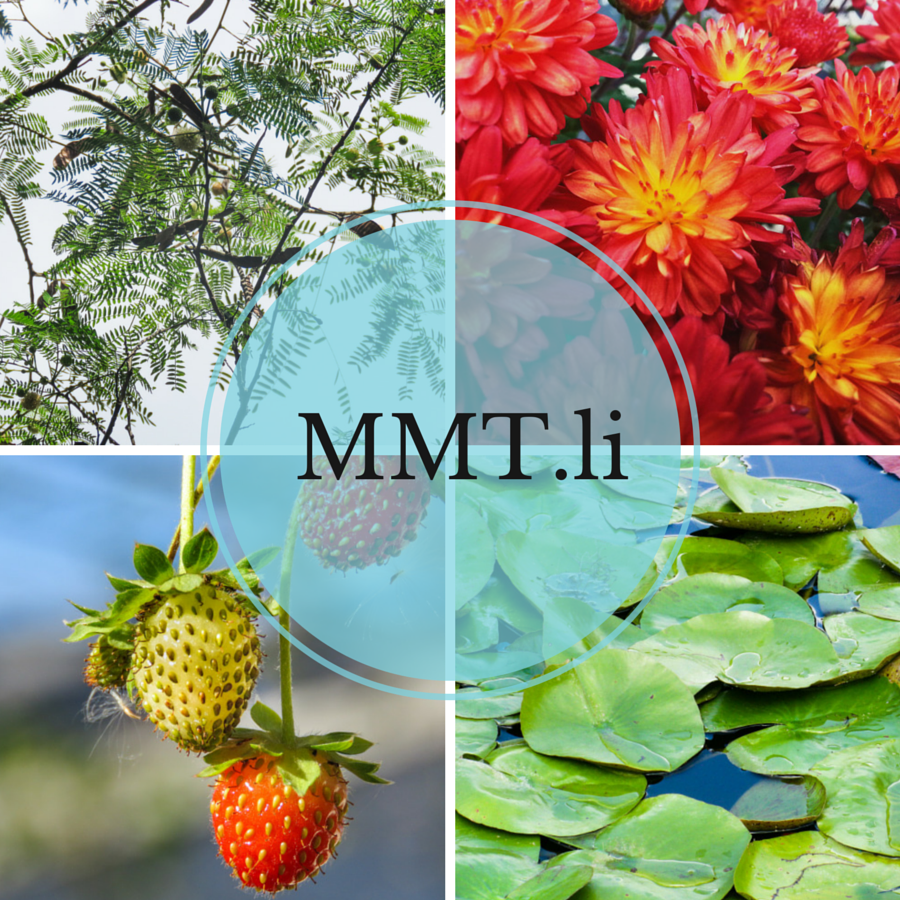 mmtli-cover