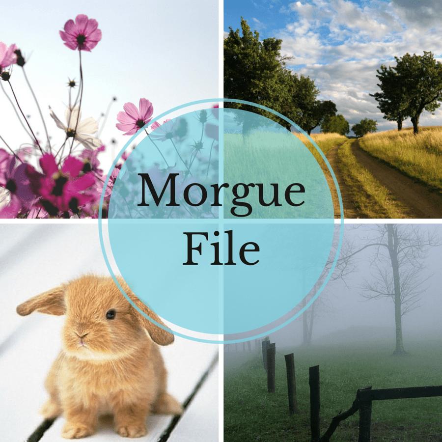 morguefile-cover