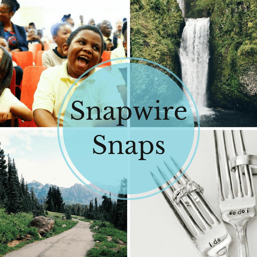 snapwiresnaps-cover