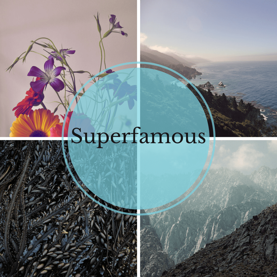 superfamous-cover