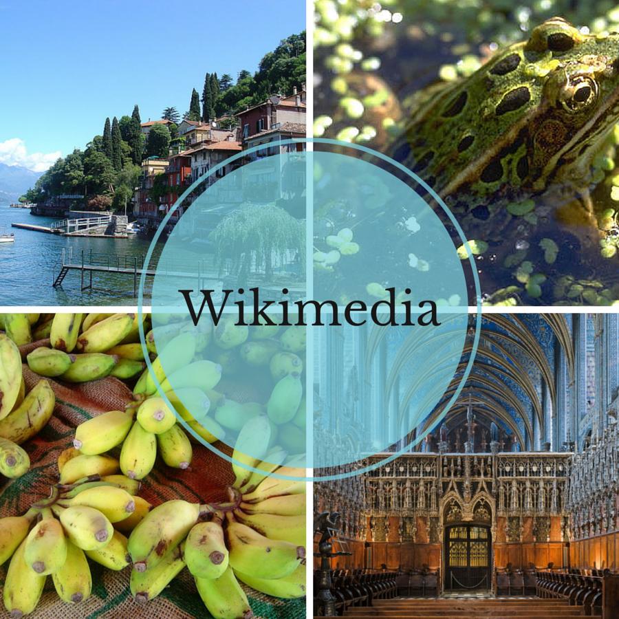 wikimedia-cover
