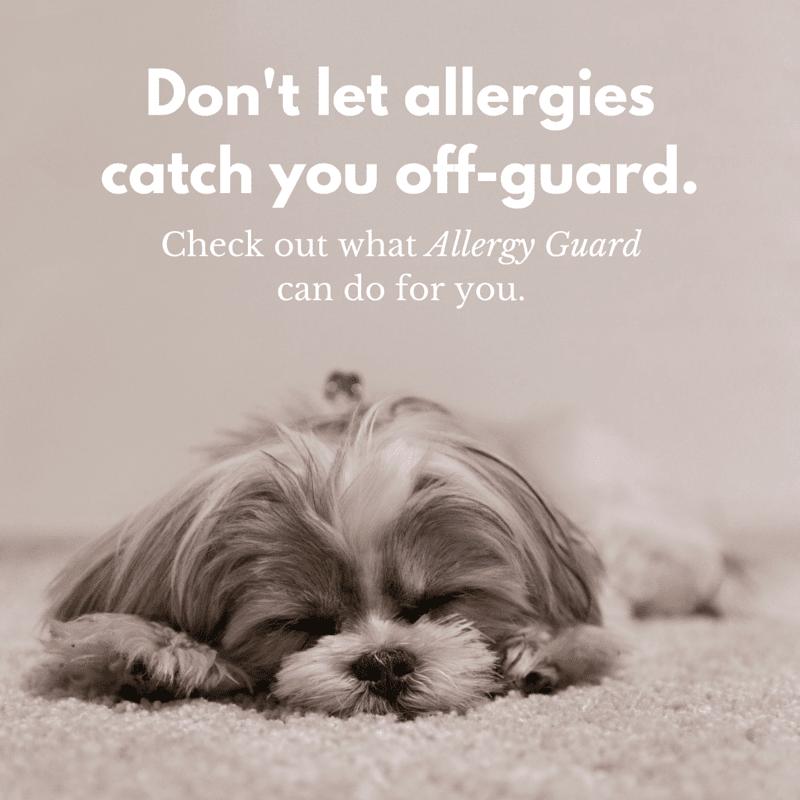 Allergy Guard