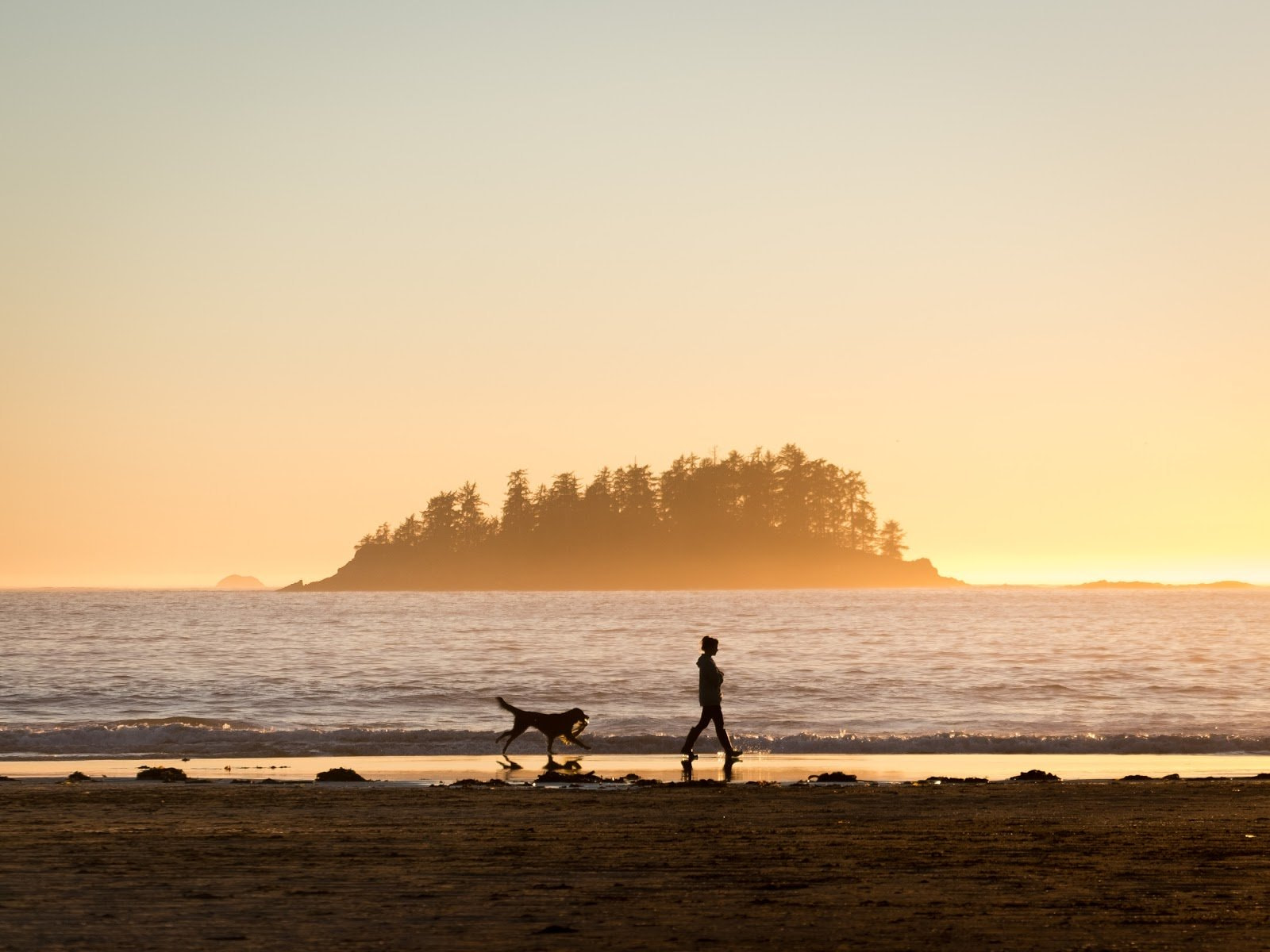 A woman and a dog walking along the beach during golden hour by Spencer Watson