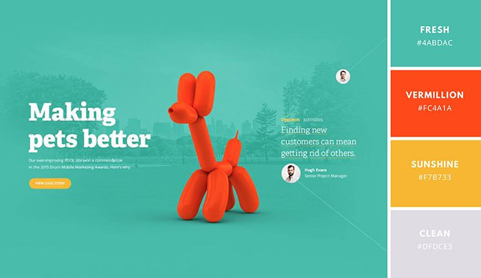 Best Website Color Scheme Examples Canva Learn
