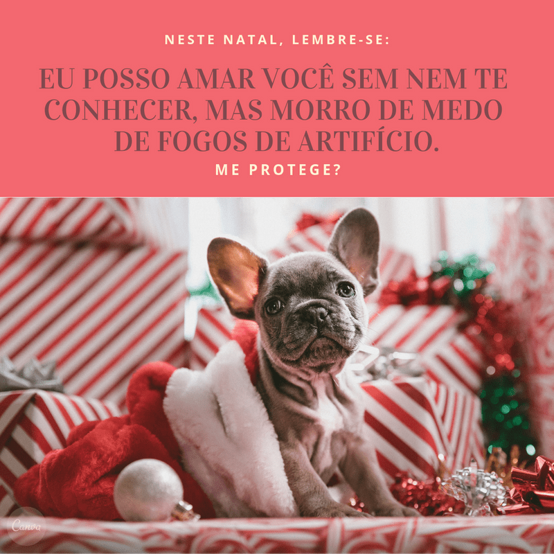 Merry Christmas Quotes BR 50