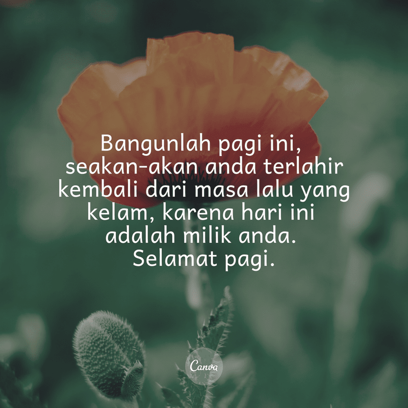 Good Morning Quotes ID 19