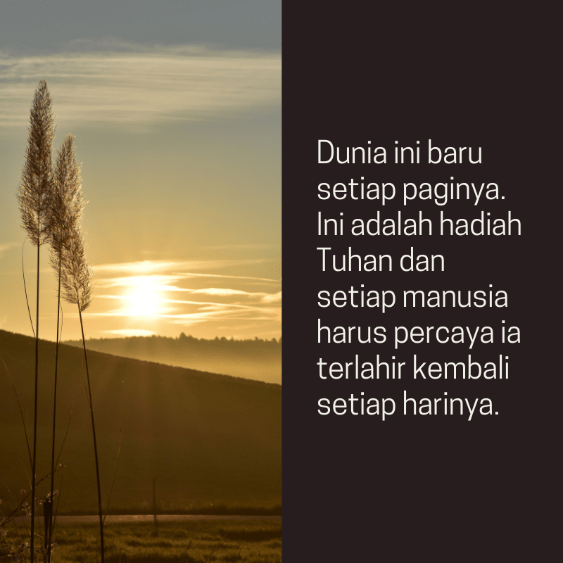 Good Morning Quotes ID 61