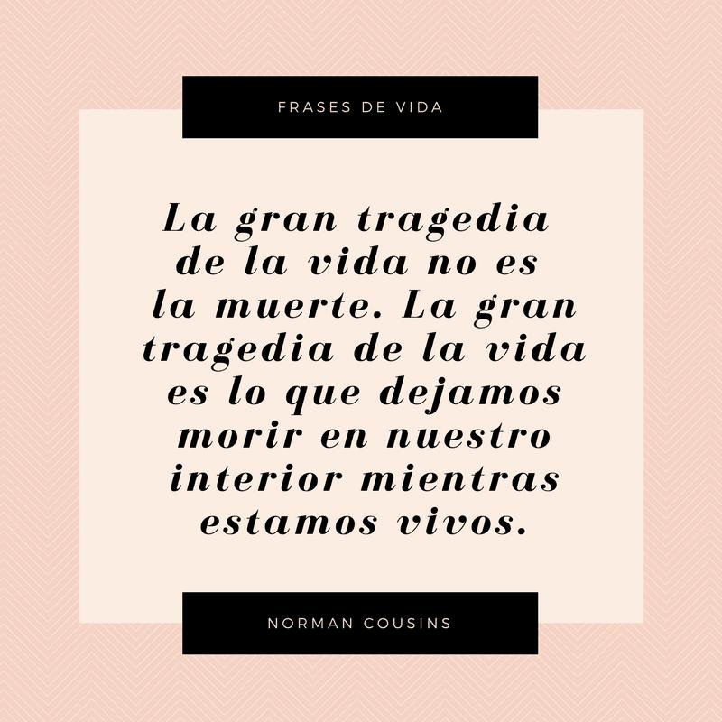 Life Quotes MX 3