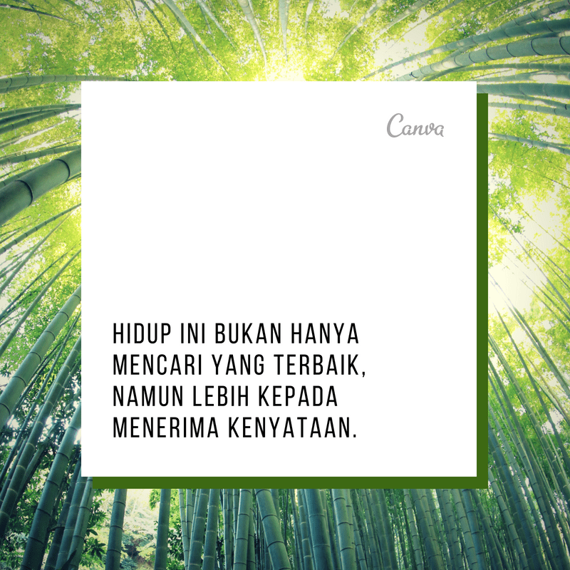 patience-quotes-screen (24)