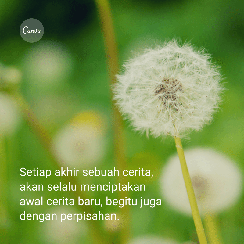 separation-quotes-screen (25)