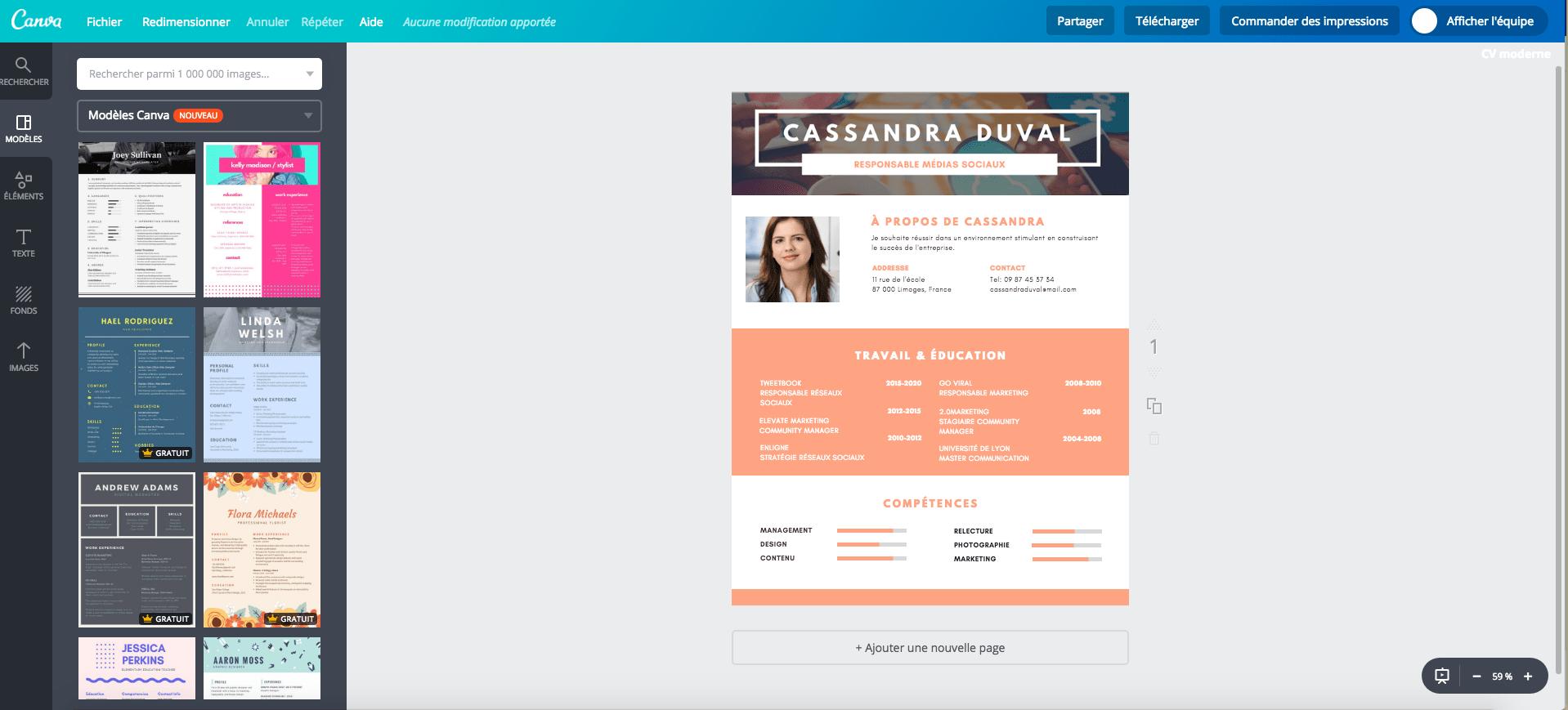 CV modern