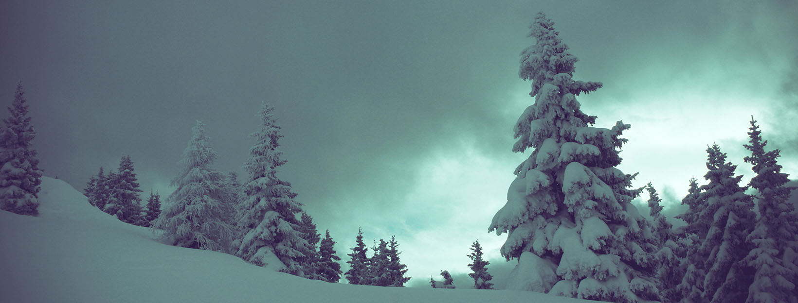 Winter-Hintergrundbilder: Wundervoll winterliche Momente