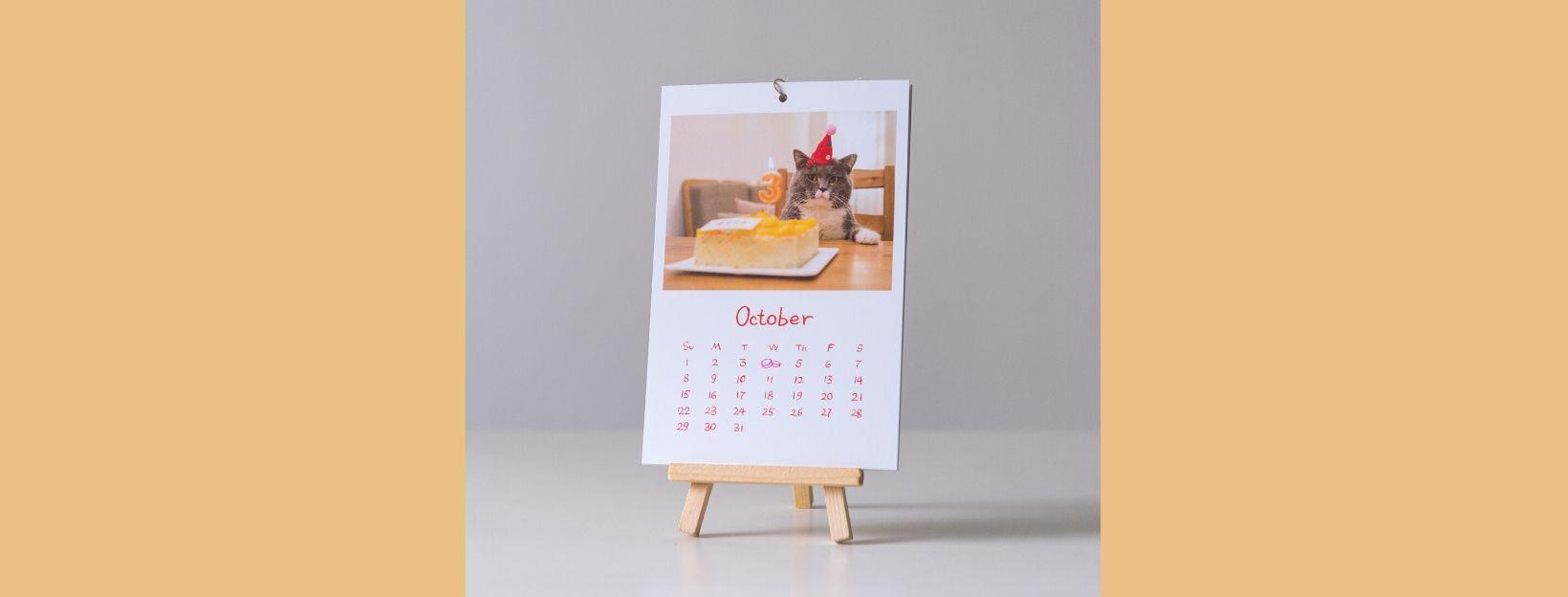Fotokalender selbst gestalten, zum Beispiel mit Fotos vom Haustier wie hier