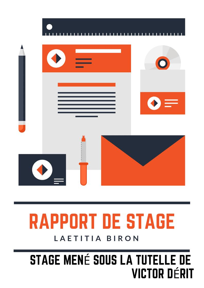 Rapport De Stage 10 Modeles Gratuits Et Efficaces Canva