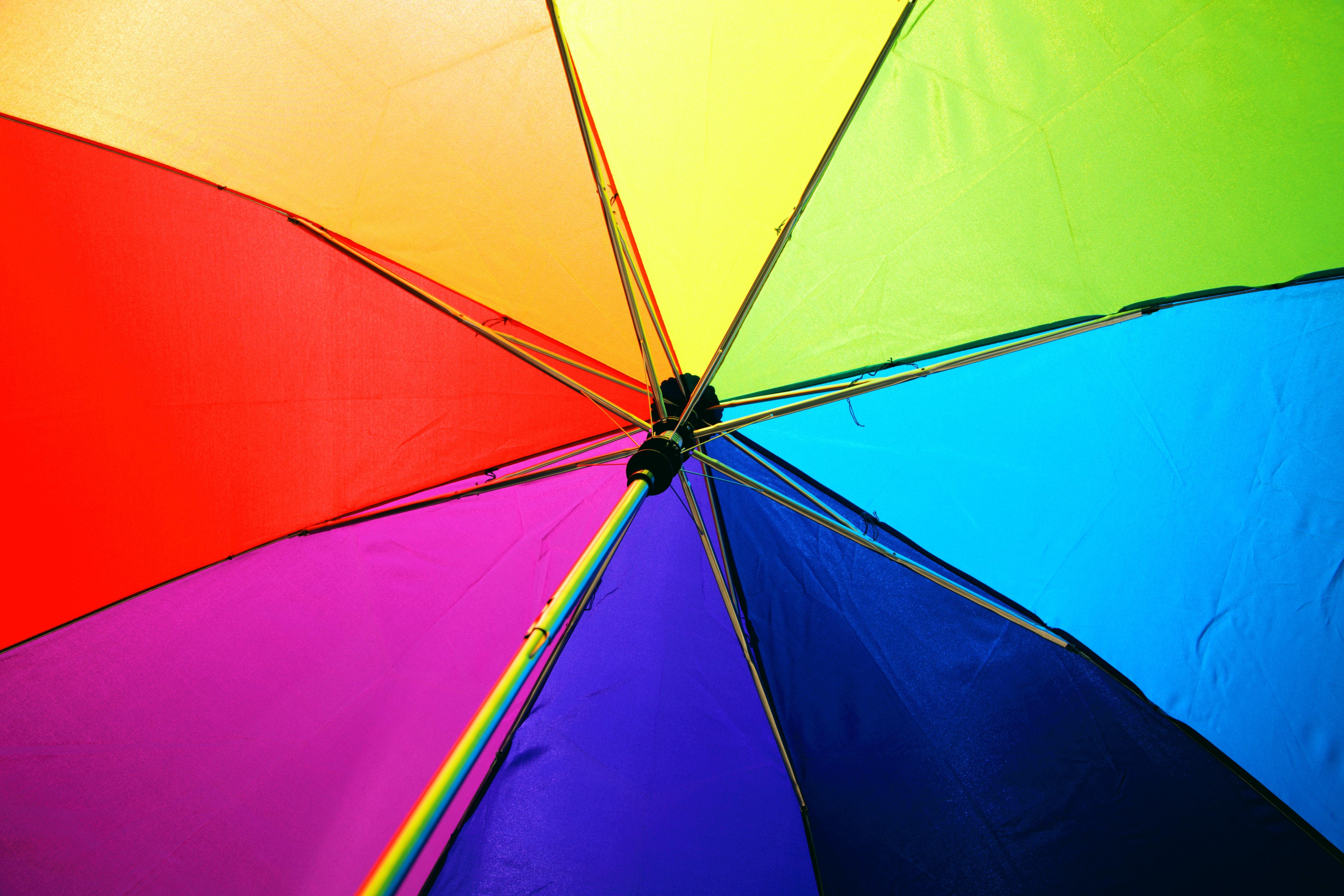 цветовой круг баннер