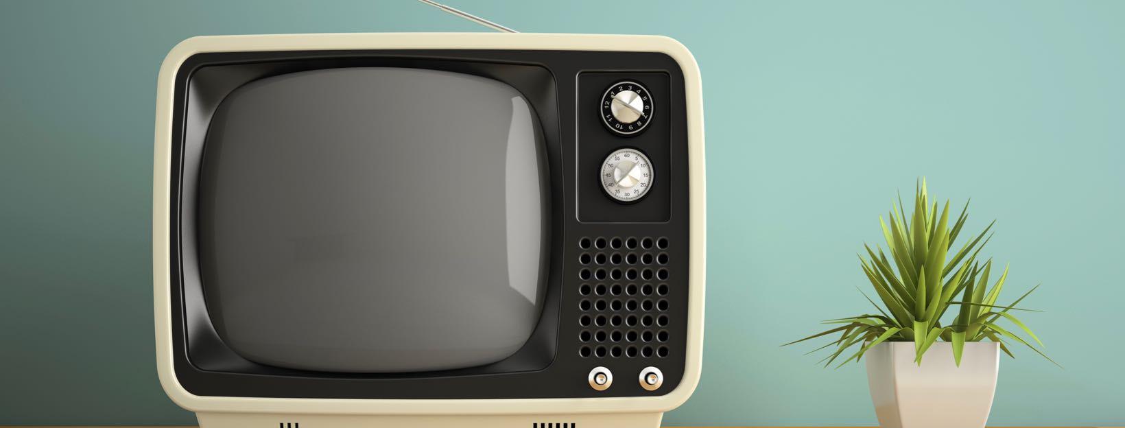Retro-Fernseher und Zimmerpflanze