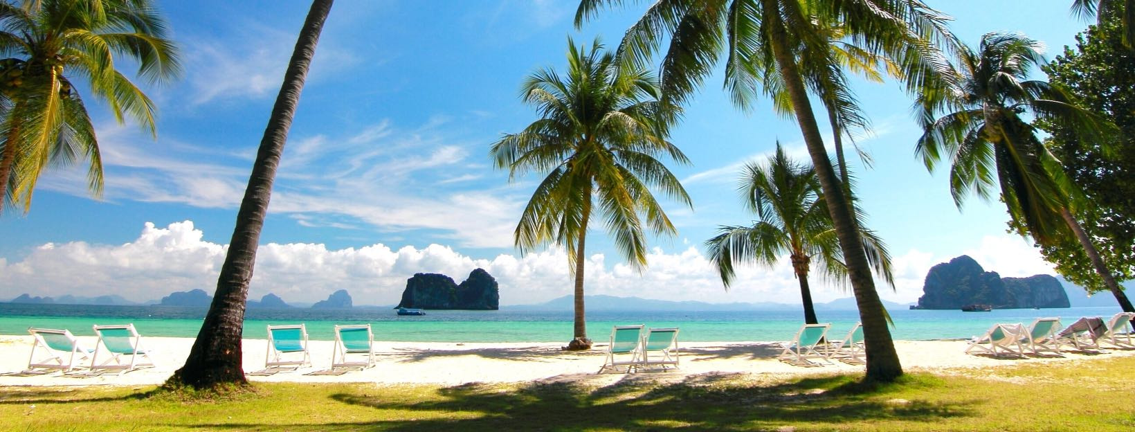 Palmen, Sonne, Strand & mehr: Erstelle einen virtuellen Hintergrund für Zoom Meetings
