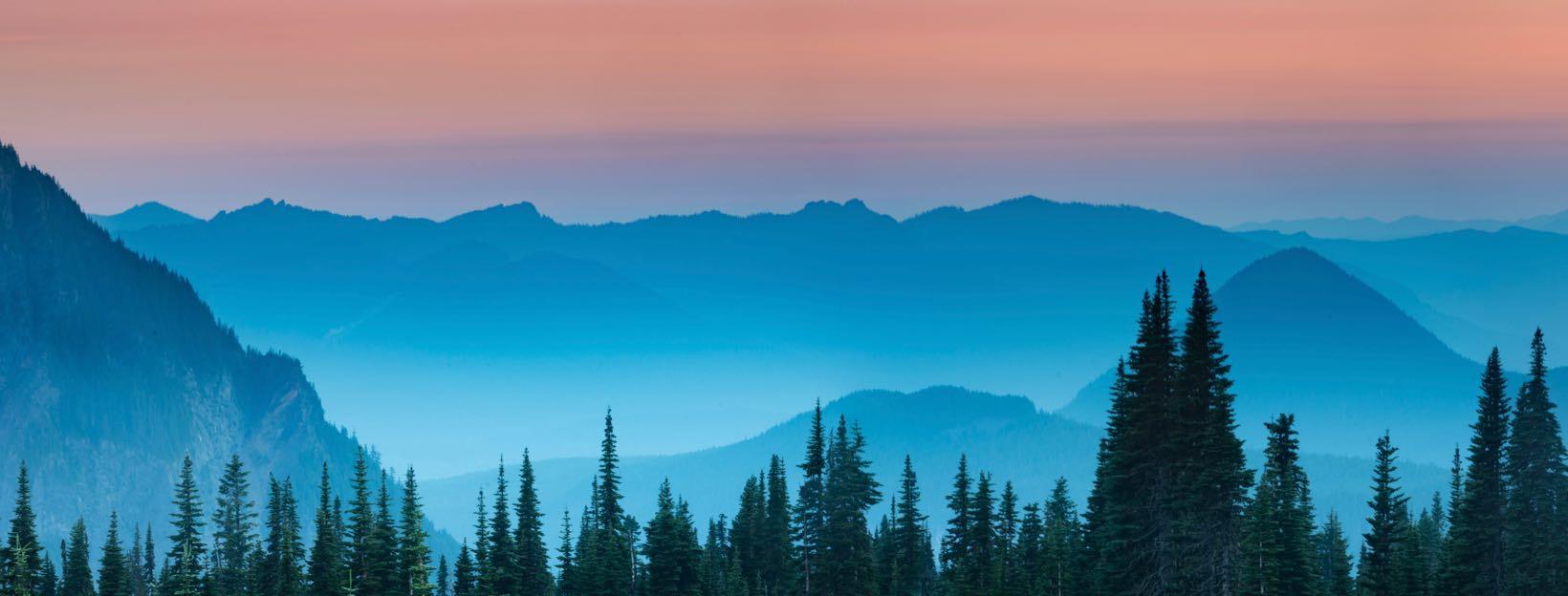 Foto von Bergen und Wäldern zur blauen Stunde]