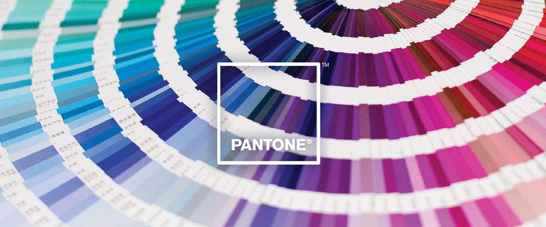 Sistema de color Pantone
