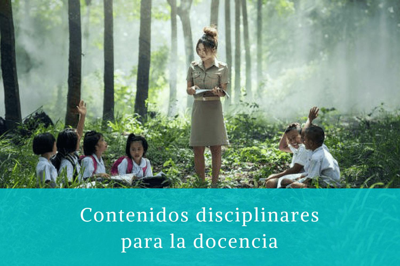 Contenidos disciplinares para la docencia