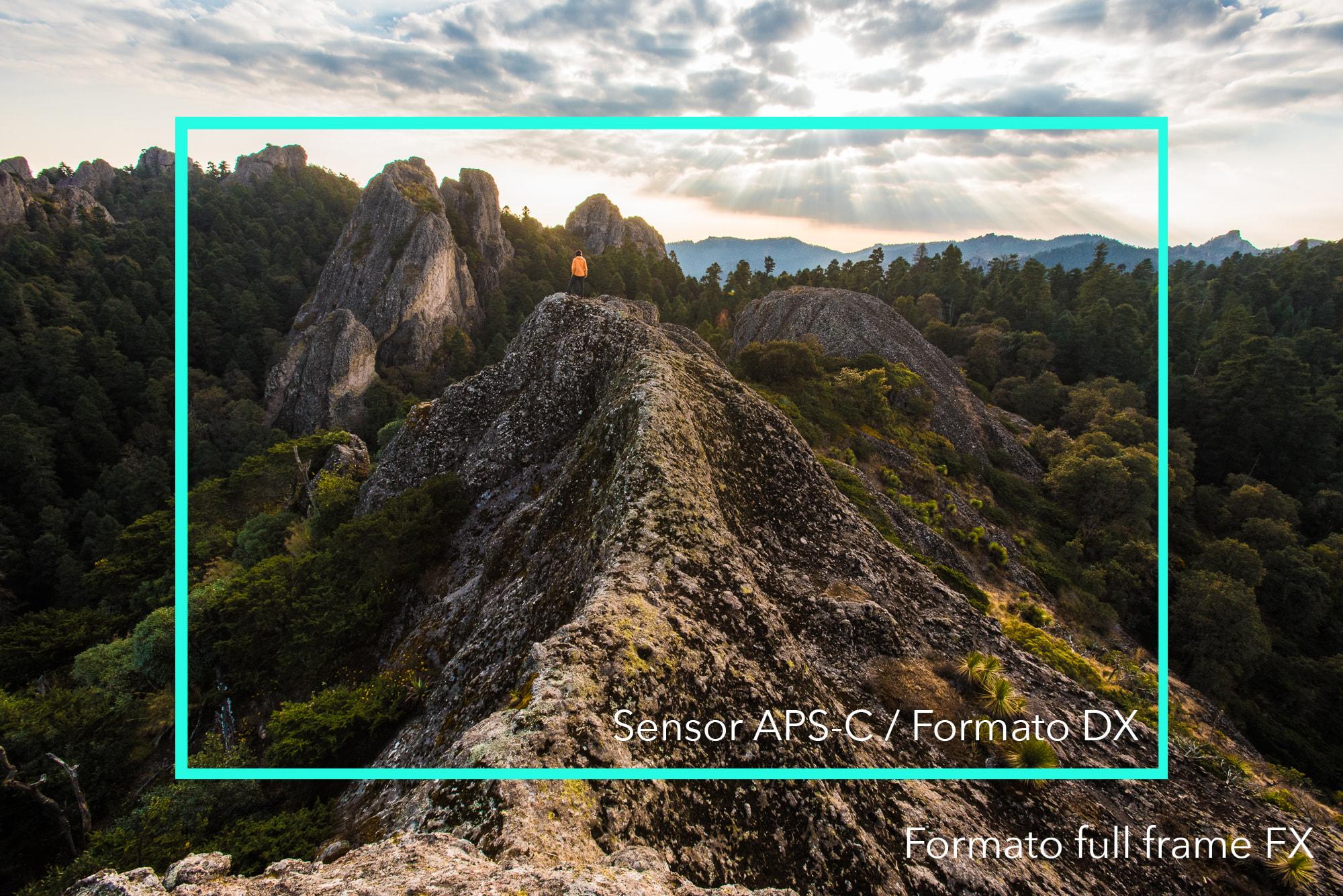 Diferencia entre un sensor full frame y un sensor APS C