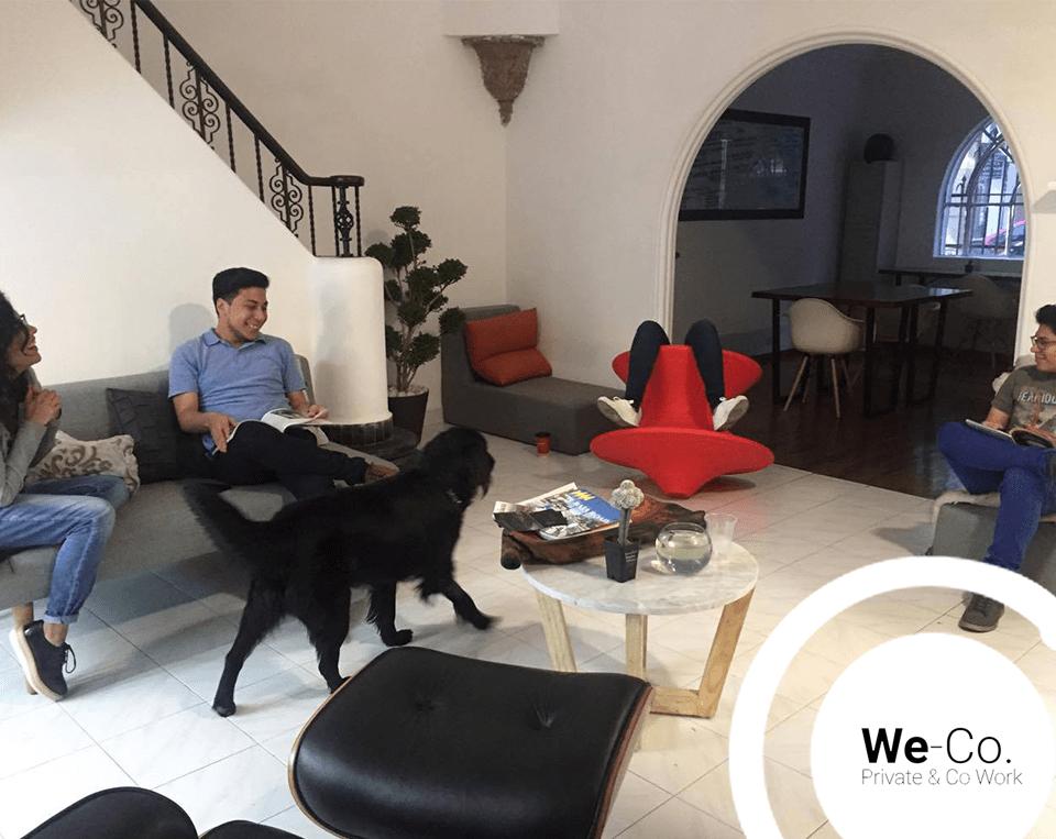 We-Co, espacios acogedores de coworking