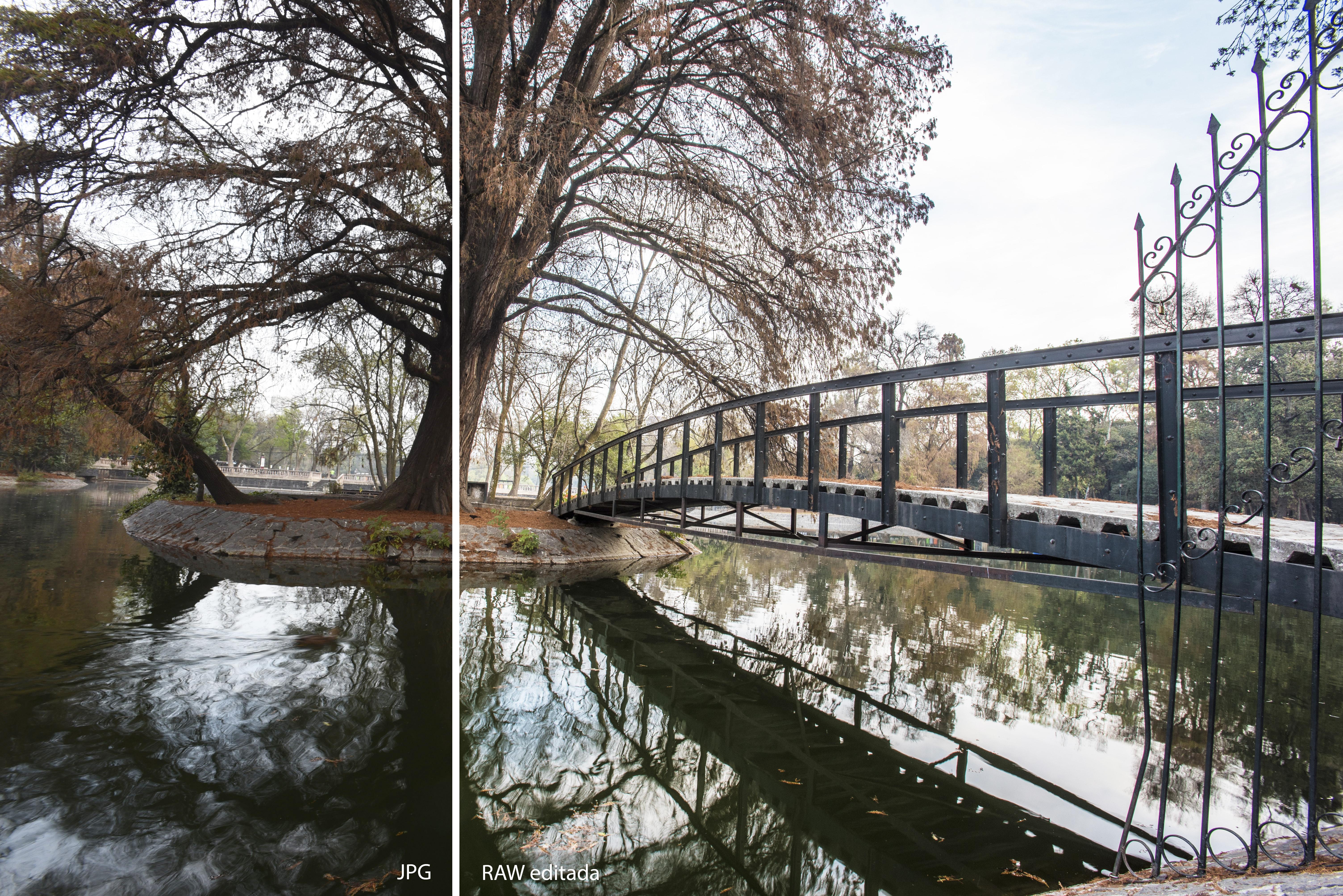 Diferencias de contraste y nitidez entre JPG y RAW editada
