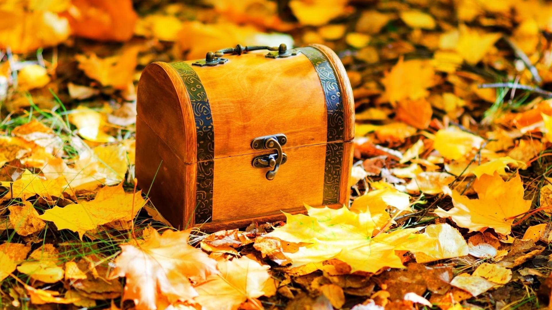 Обои на осень: 100 вдохновляющих фонов для рабочего стола – Canva