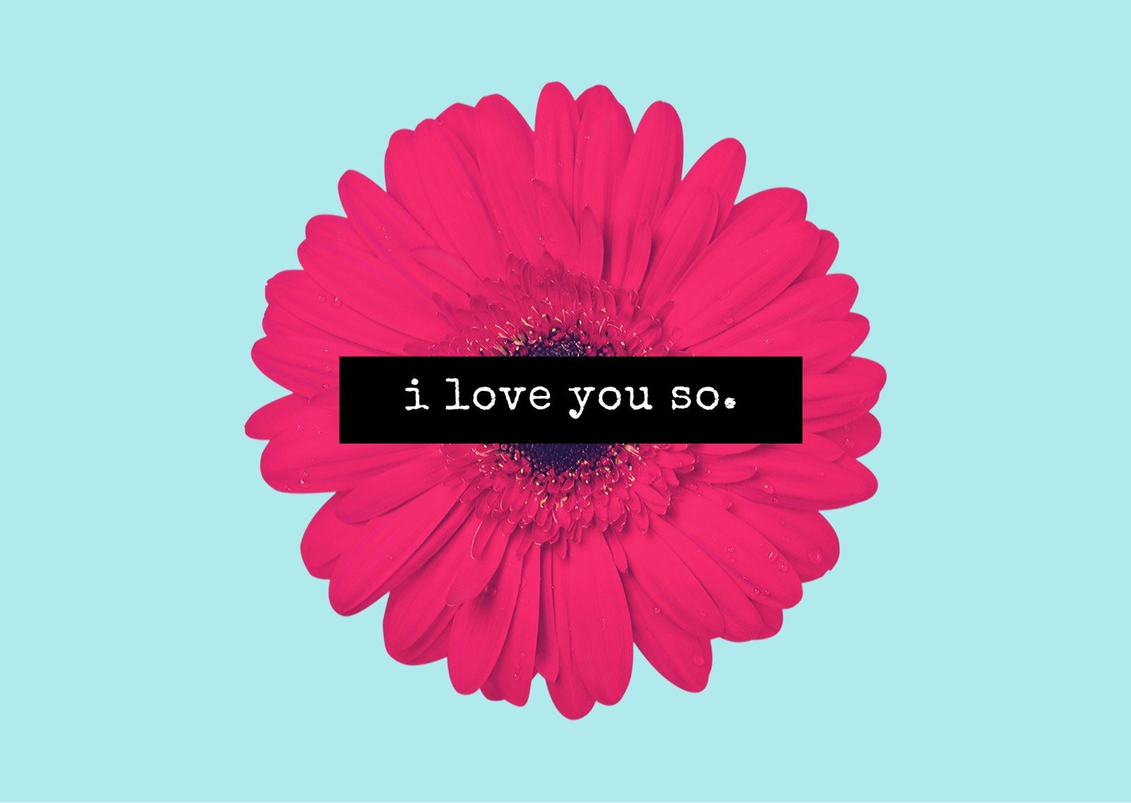 Blue Pink Flower Minimal Love Postcard