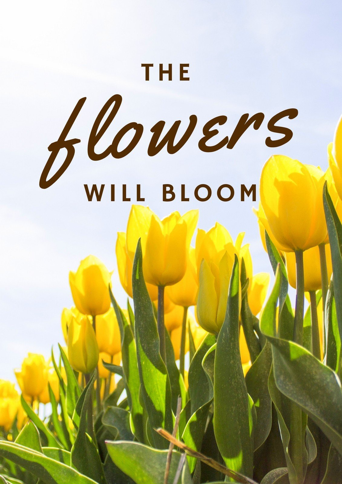 The Flowers Will Bloom.