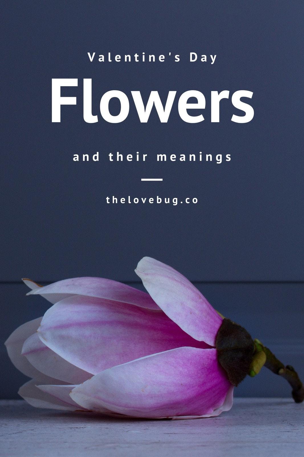 Valentine's Day Flowers Blog Graphic