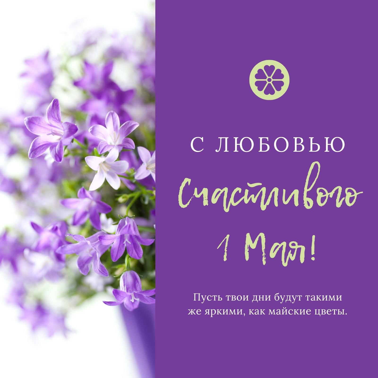 Фиолетовая Цветок 1 Мая Instagram Публикация