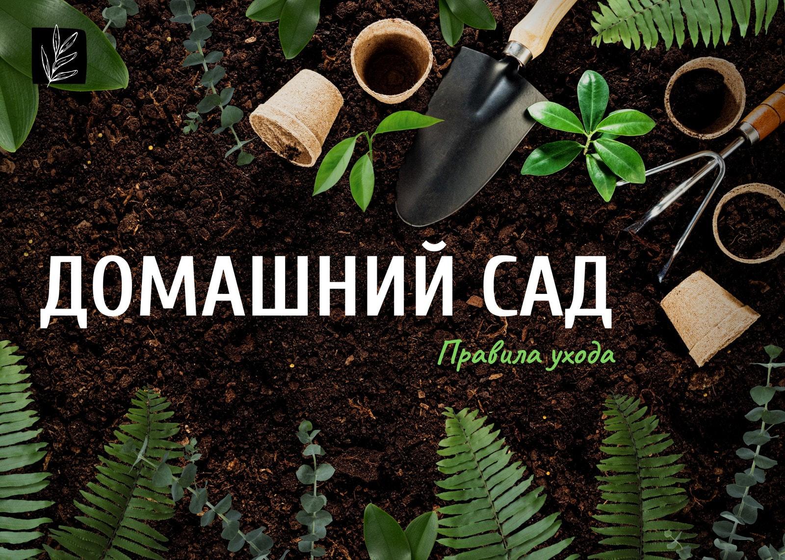 Зеленая публикация в ВК об уходе за садом