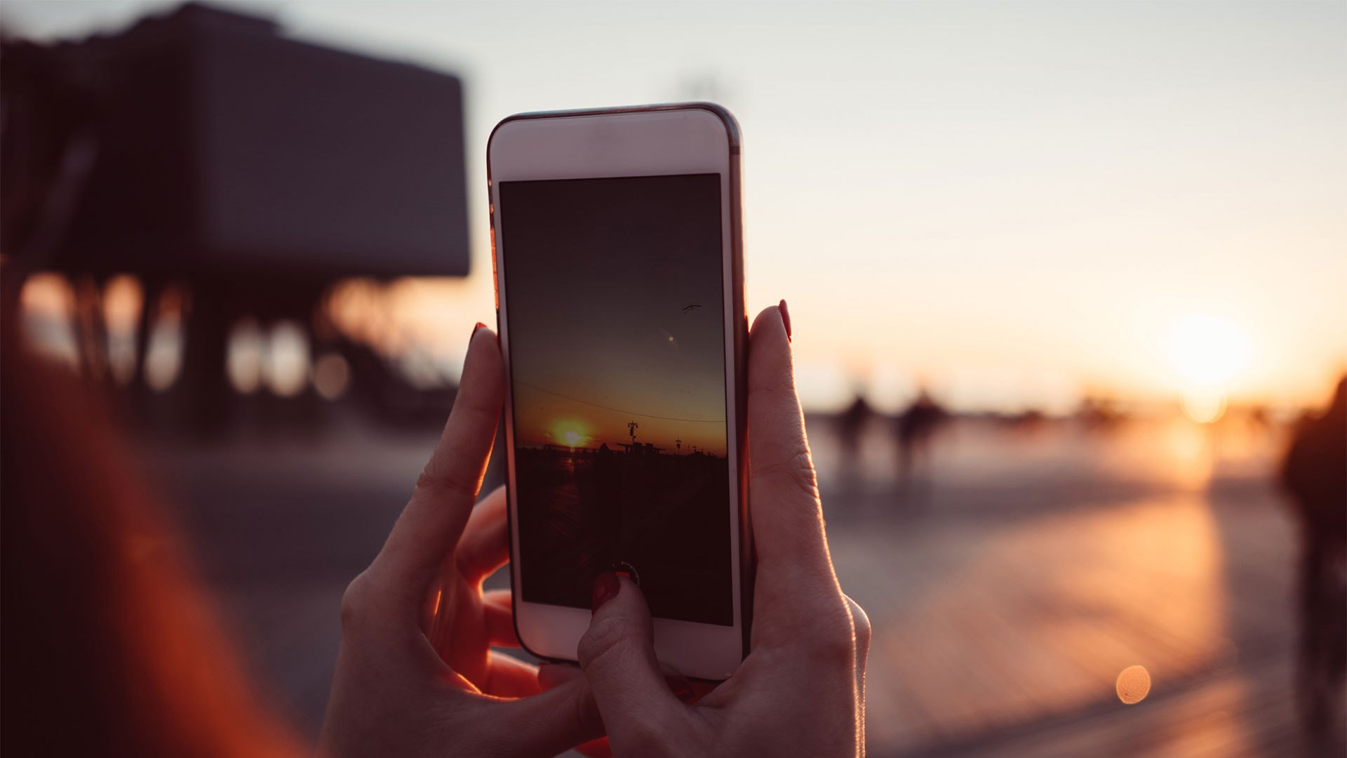 写真加工アプリCanvaの魅力とは、他社アプリと比較してみた