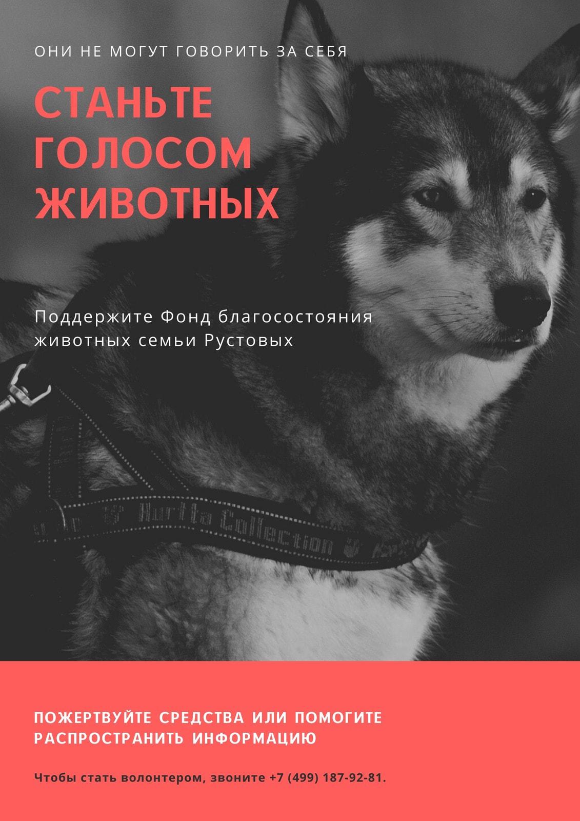 Серый Фото с Красная Форма Права животных Плакат