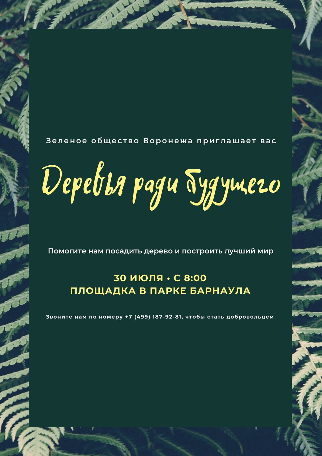 Зеленый Природа Фото Защита окружающей среды Плакат