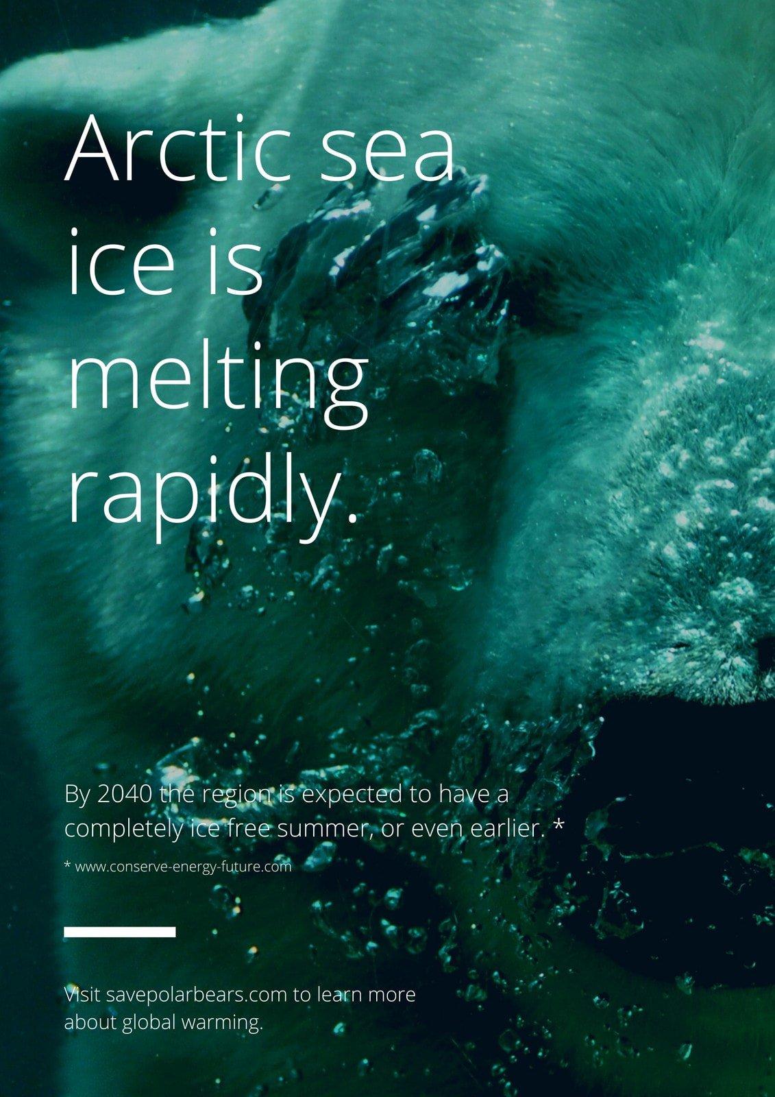 Blue & White Polar Bear Photo Global Warming Awareness Statistics Poster