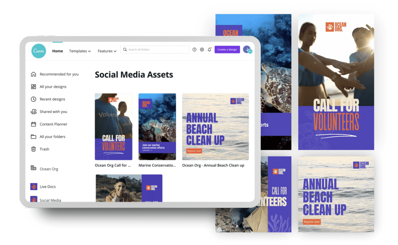 Organise your assets in one place - Canva Teams