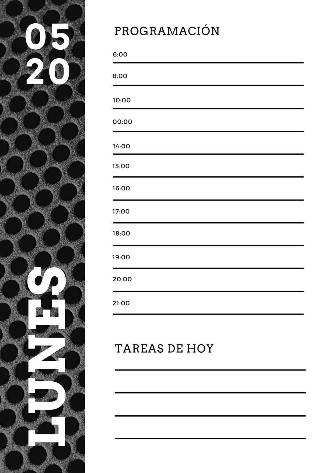 Negro Blanco Textura Metalizada Diario Planificador