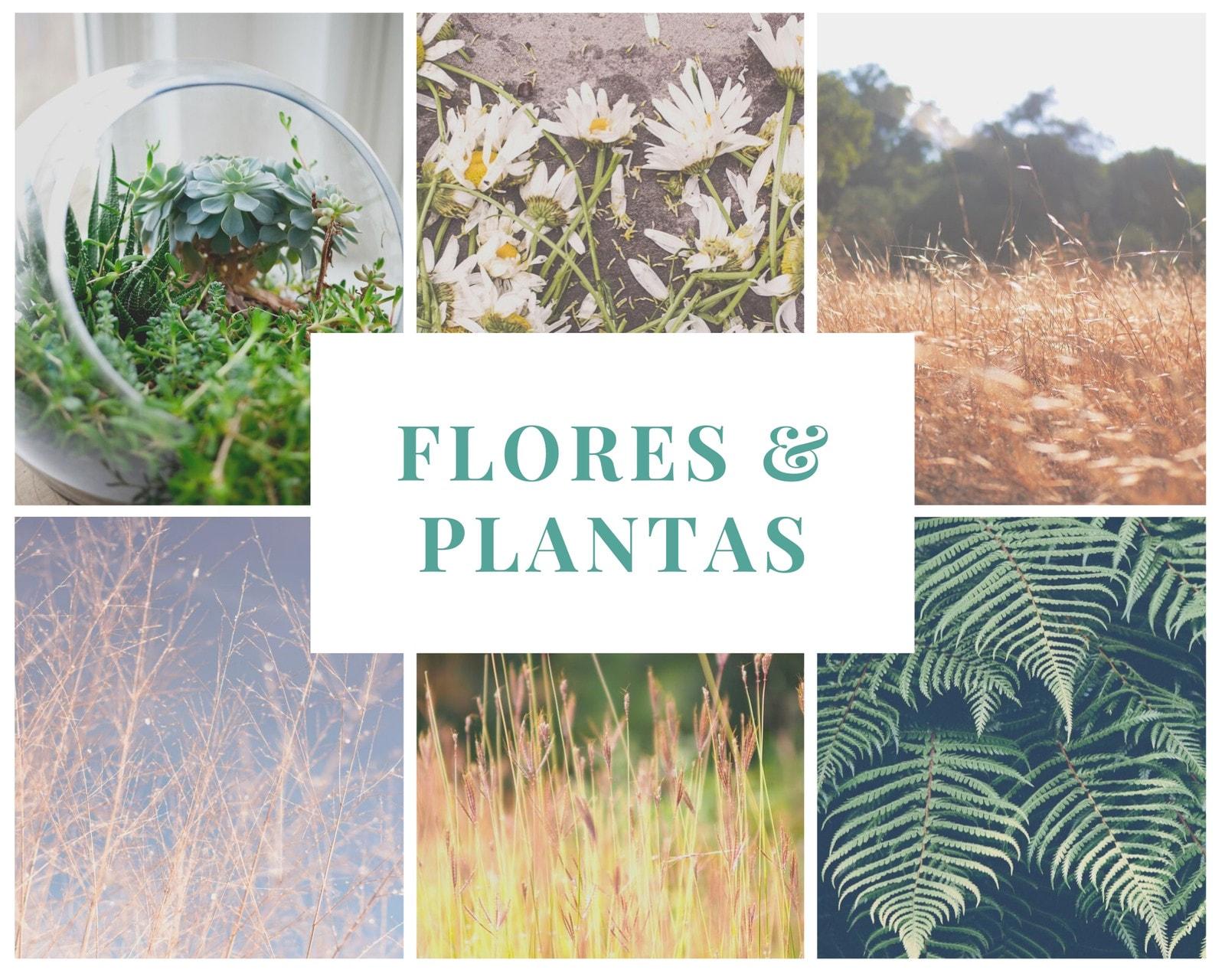 Verde Blanco Plantas Flores Cuadro Borde Foto Collage