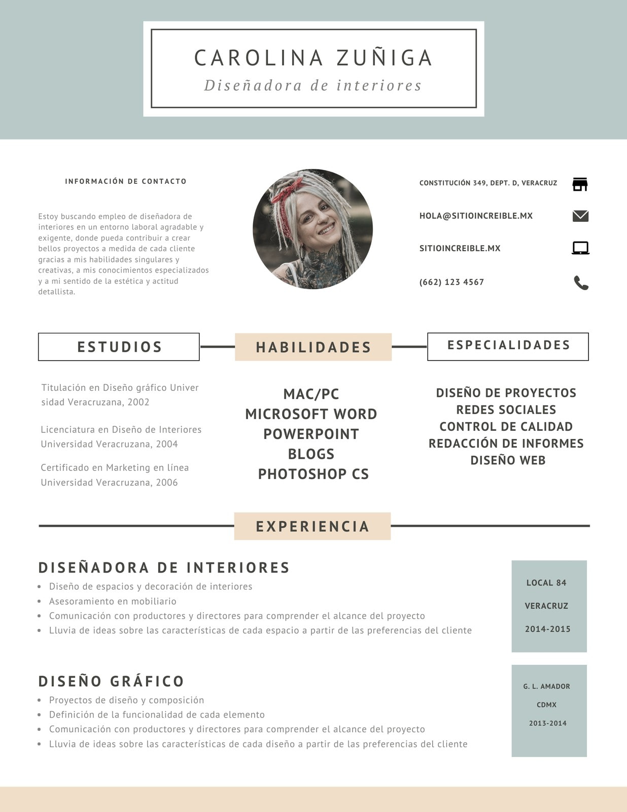 Rosa Azul Diseño Currículum