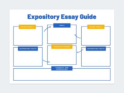Student essay plan