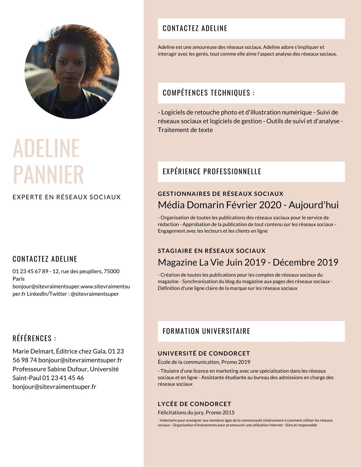 Féminine Moderne Infographique C.V.