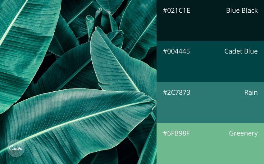 45 Schone Farbpaletten Und Farbkombinationen Fur Jeden Zweck