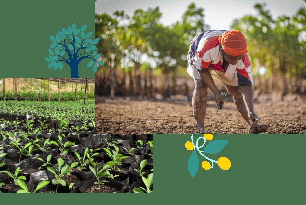 Sustainability_5_PrintPlant