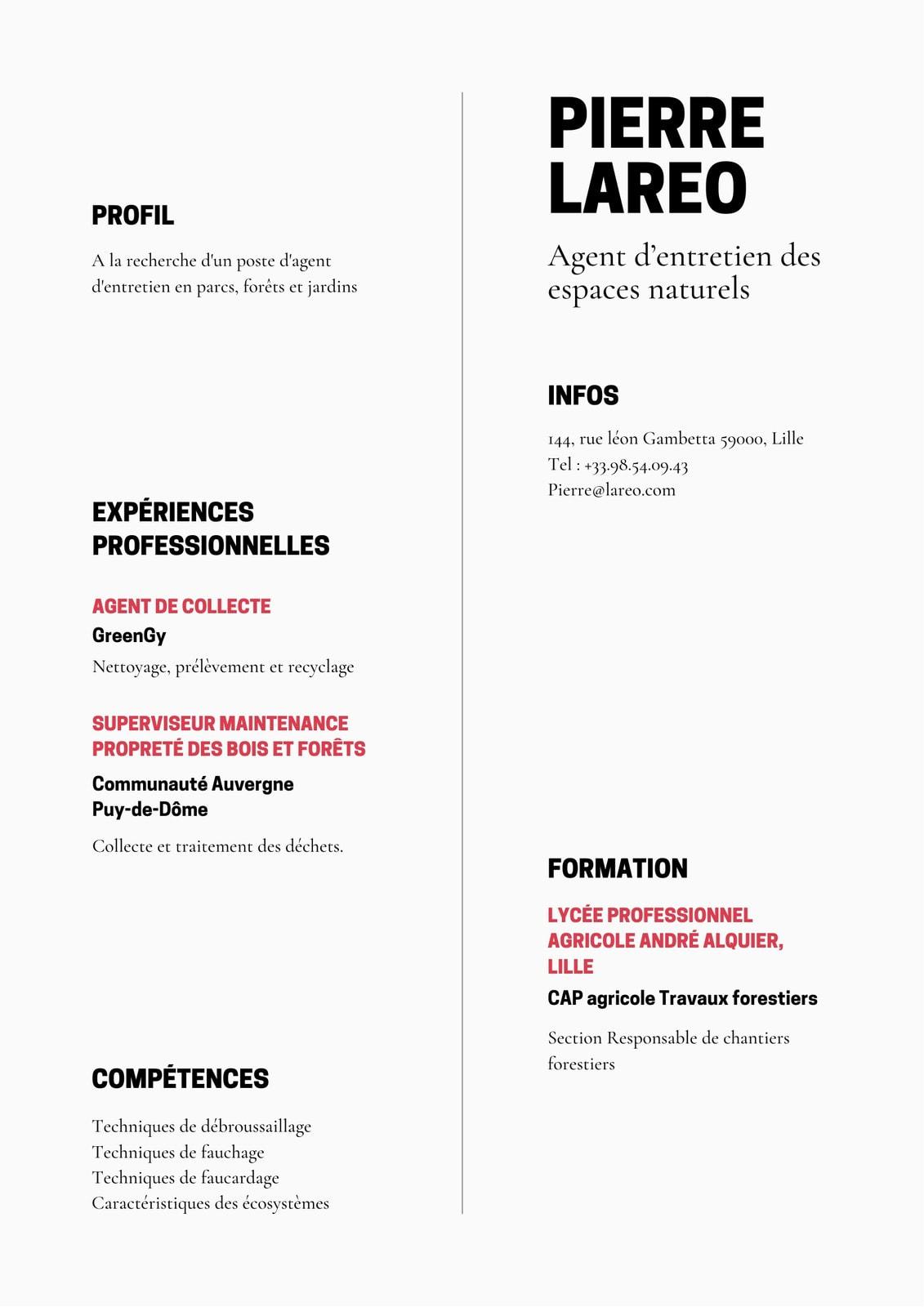 CV  minimaliste noir, blanc et rouge